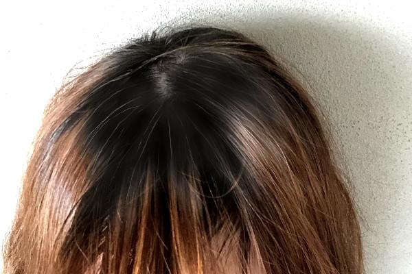 マイナチュレの白髪染めを使用する前の髪色